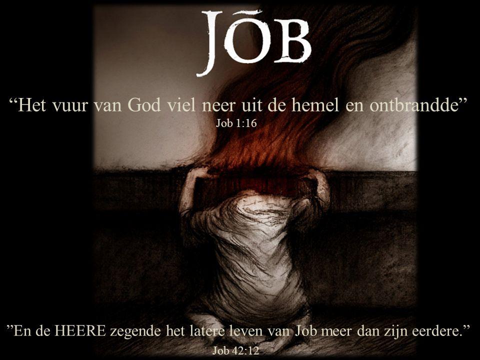 """""""En de HEERE zegende het latere leven van Job meer dan zijn eerdere."""" Job 42:12 """"Het vuur van God viel neer uit de hemel en ontbrandde"""" Job 1:16"""