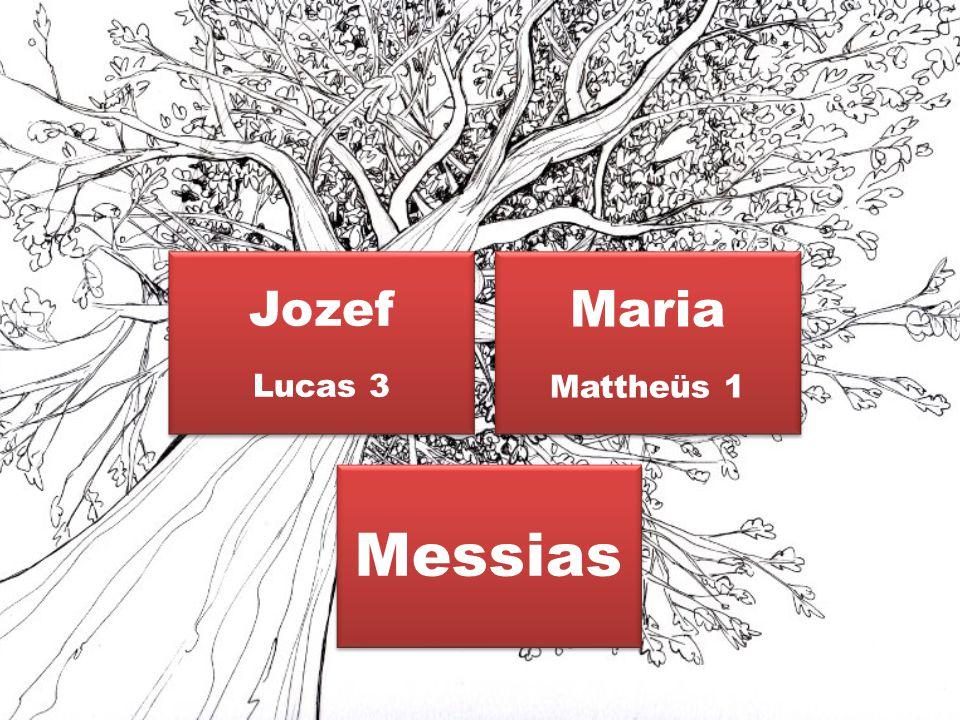 Jozef Lucas 3 Maria Mattheüs 1 Messias