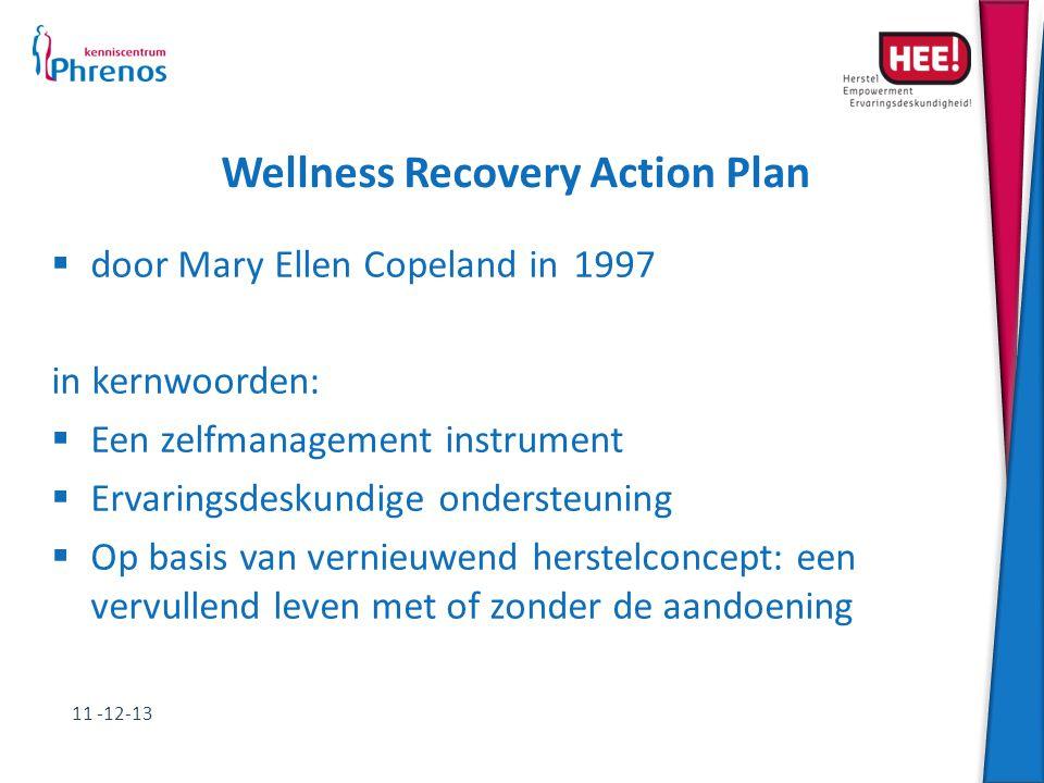 Wellness Recovery Action Plan  door Mary Ellen Copeland in1997 in kernwoorden:  Een zelfmanagement instrument  Ervaringsdeskundige ondersteuning 
