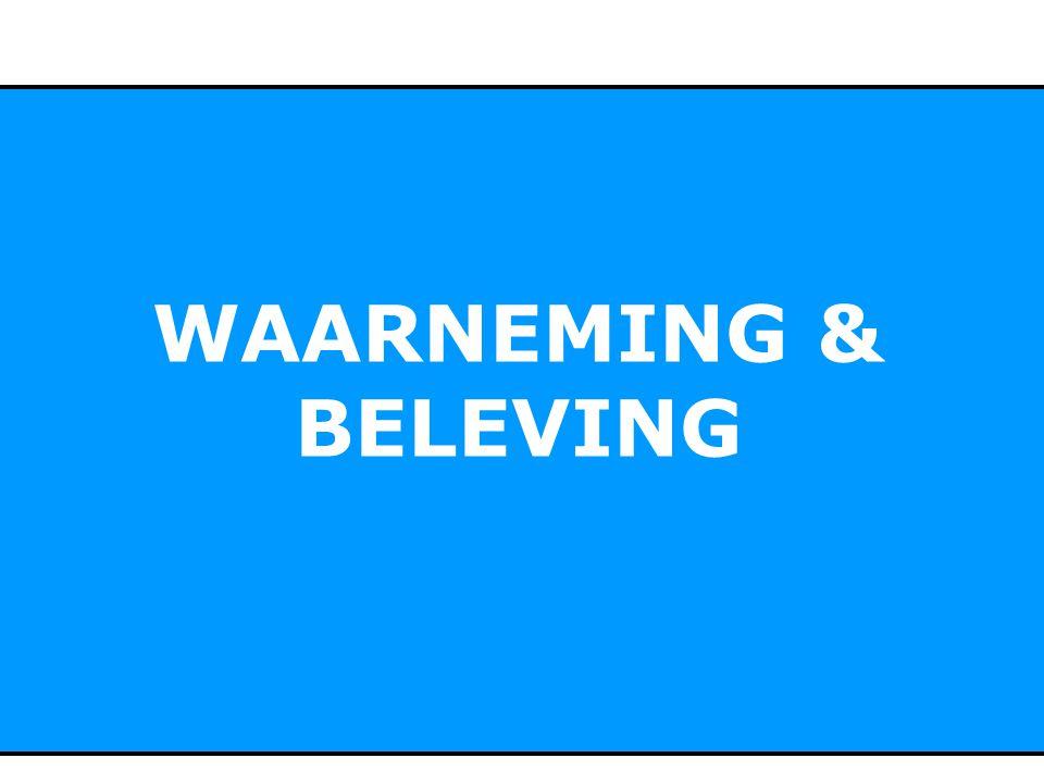 WAARNEMING & BELEVING