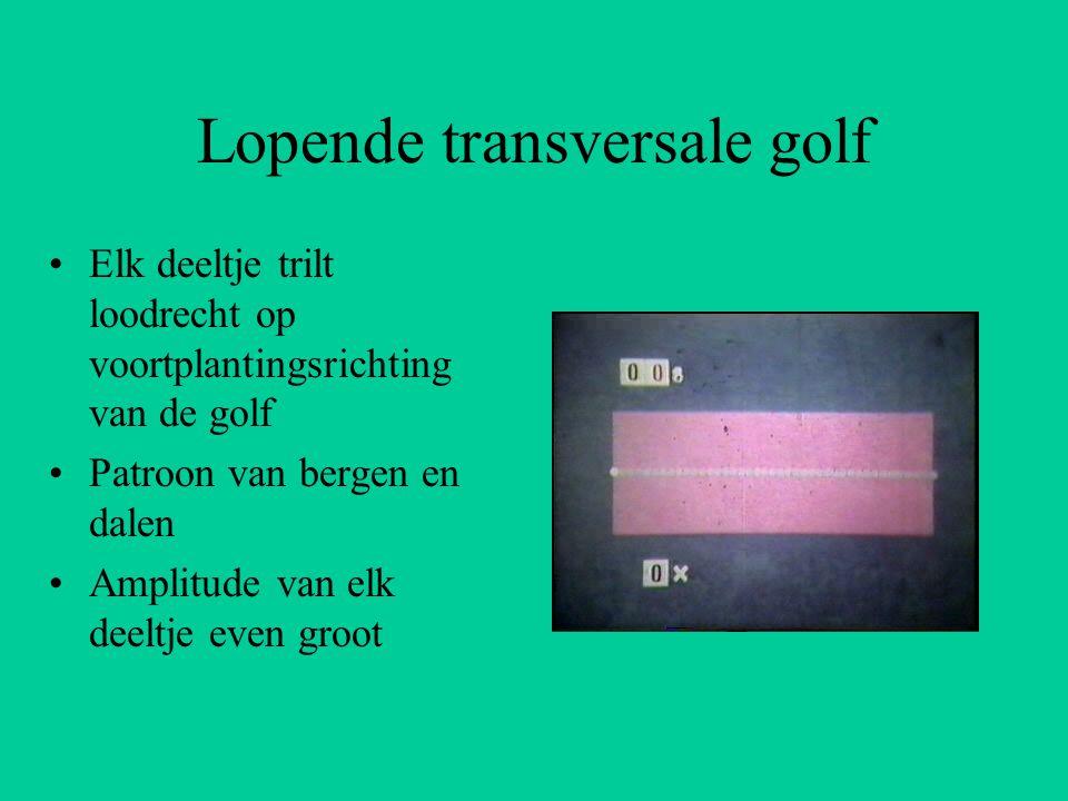 Lopende transversale golf Elk deeltje trilt loodrecht op voortplantingsrichting van de golf Patroon van bergen en dalen Amplitude van elk deeltje even