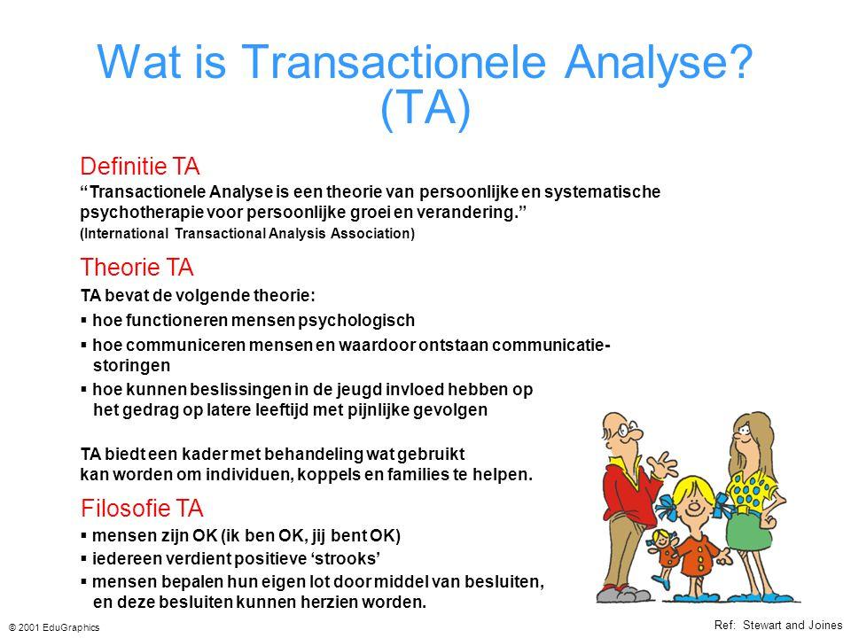 Wat is Transactionele Analyse.