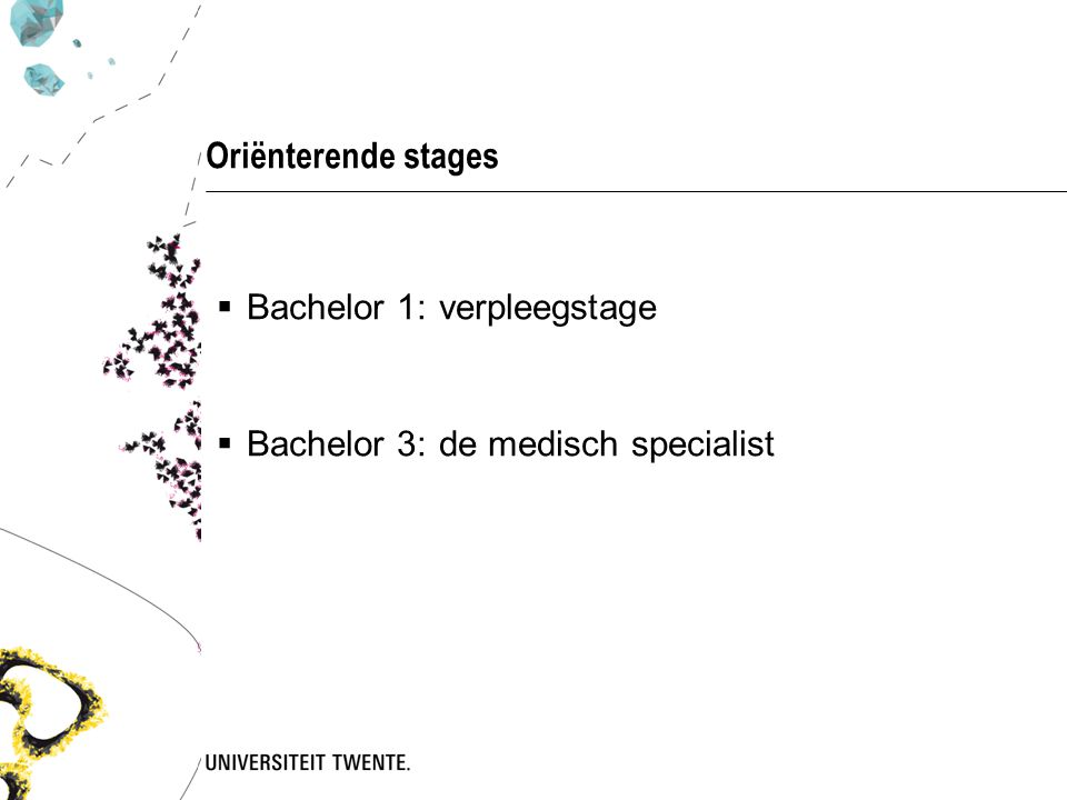 Oriënterende stages  Bachelor 1:verpleegstage  Bachelor 3:de medisch specialist