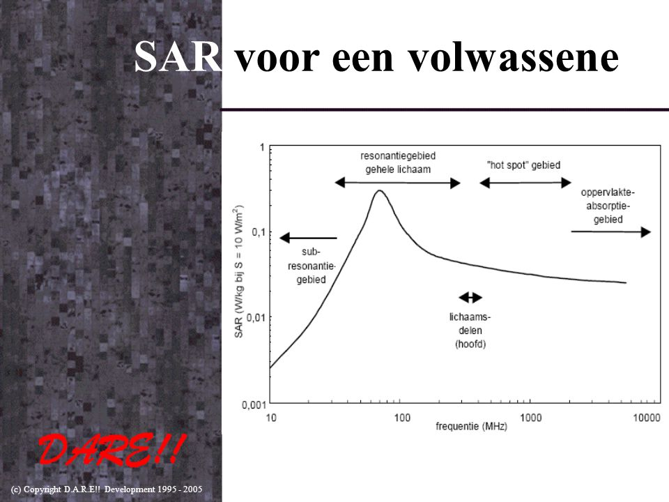 (c) Copyright D.A.R.E!! Development 1995 - 2005 SAR voor een volwassene