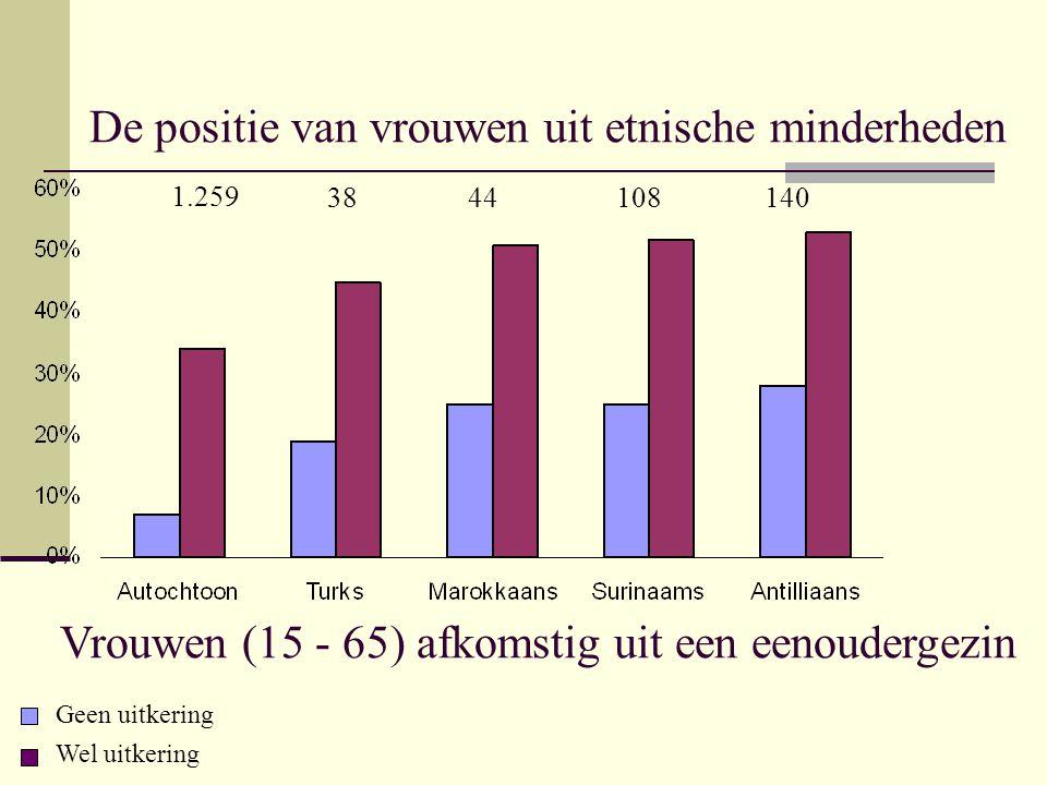 De positie van vrouwen uit etnische minderheden Vrouwen (15 - 65) afkomstig uit een eenoudergezin Geen uitkering Wel uitkering 1.259 38 44 108140