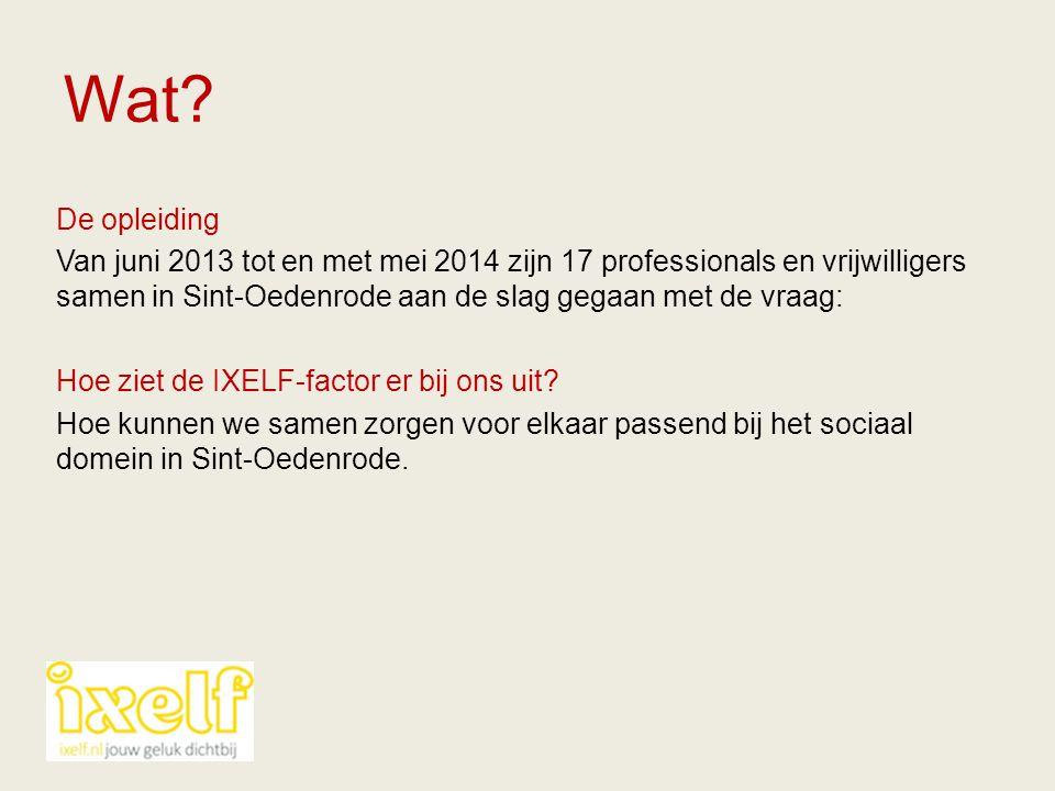 Wat? De opleiding Van juni 2013 tot en met mei 2014 zijn 17 professionals en vrijwilligers samen in Sint-Oedenrode aan de slag gegaan met de vraag: Ho