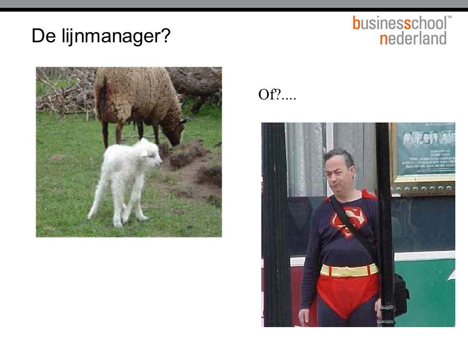 De lijnmanager? Of?....