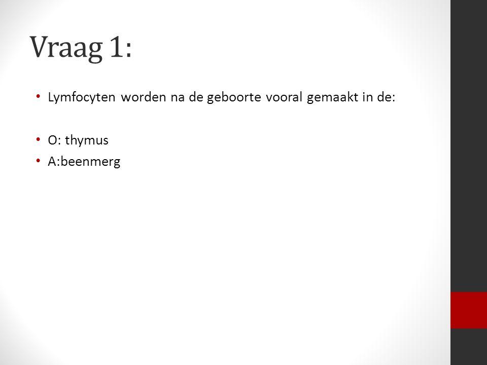 Vraag 1: Lymfocyten worden na de geboorte vooral gemaakt in de: O: thymus A:beenmerg