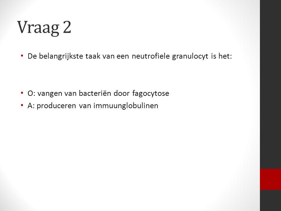 Vraag 2 De belangrijkste taak van een neutrofiele granulocyt is het: O: vangen van bacteriën door fagocytose A: produceren van immuunglobulinen