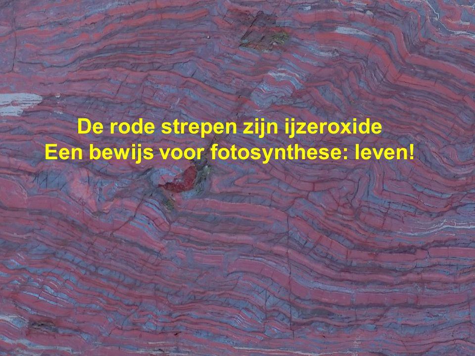 De rode strepen zijn ijzeroxide Een bewijs voor fotosynthese: leven!