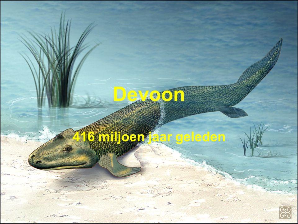 Devoon 416 miljoen jaar geleden