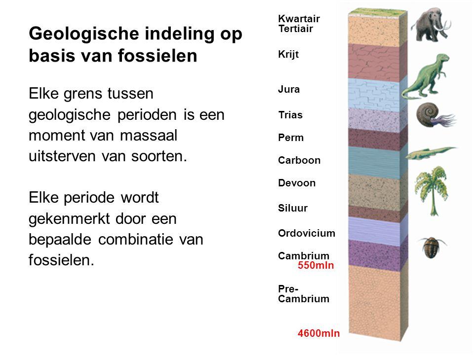 Geologische indeling op basis van fossielen Elke grens tussen geologische perioden is een moment van massaal uitsterven van soorten. Elke periode word