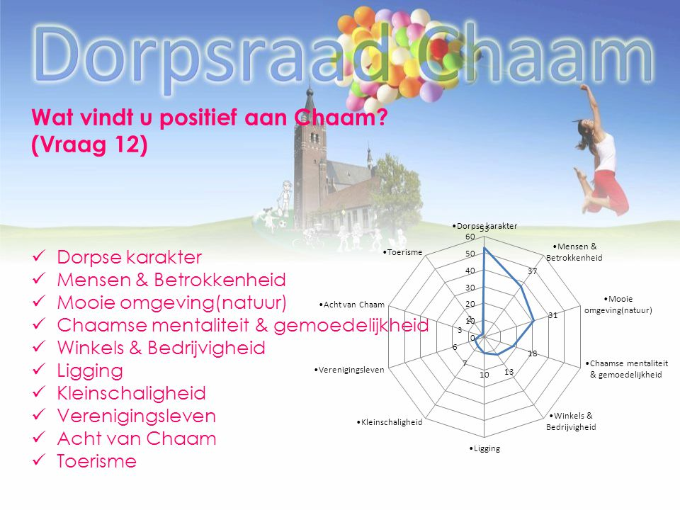 Wat vindt u positief aan Chaam? (Vraag 12) Dorpse karakter Mensen & Betrokkenheid Mooie omgeving(natuur) Chaamse mentaliteit & gemoedelijkheid Winkels