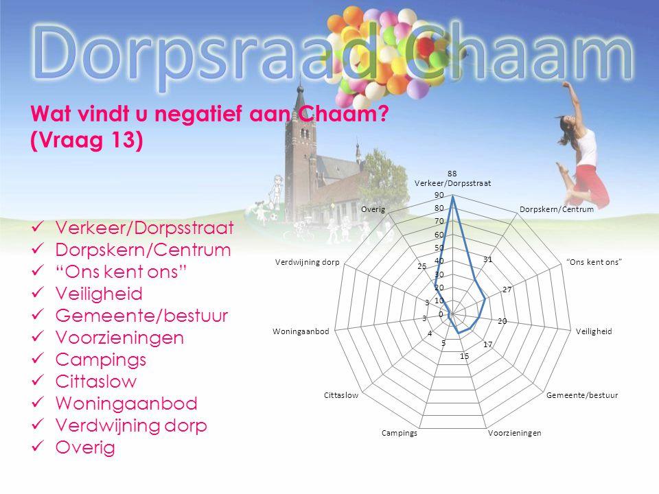"Wat vindt u negatief aan Chaam? (Vraag 13) Verkeer/Dorpsstraat Dorpskern/Centrum ""Ons kent ons"" Veiligheid Gemeente/bestuur Voorzieningen Campings Cit"
