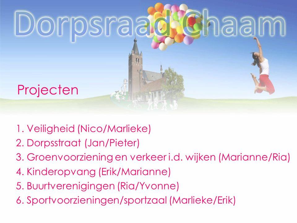 Projecten 1. Veiligheid (Nico/Marlieke) 2. Dorpsstraat (Jan/Pieter) 3. Groenvoorziening en verkeer i.d. wijken (Marianne/Ria) 4. Kinderopvang (Erik/Ma