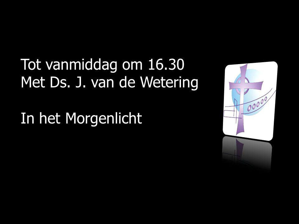 Tot vanmiddag om 16.30 Met Ds. J. van de Wetering In het Morgenlicht