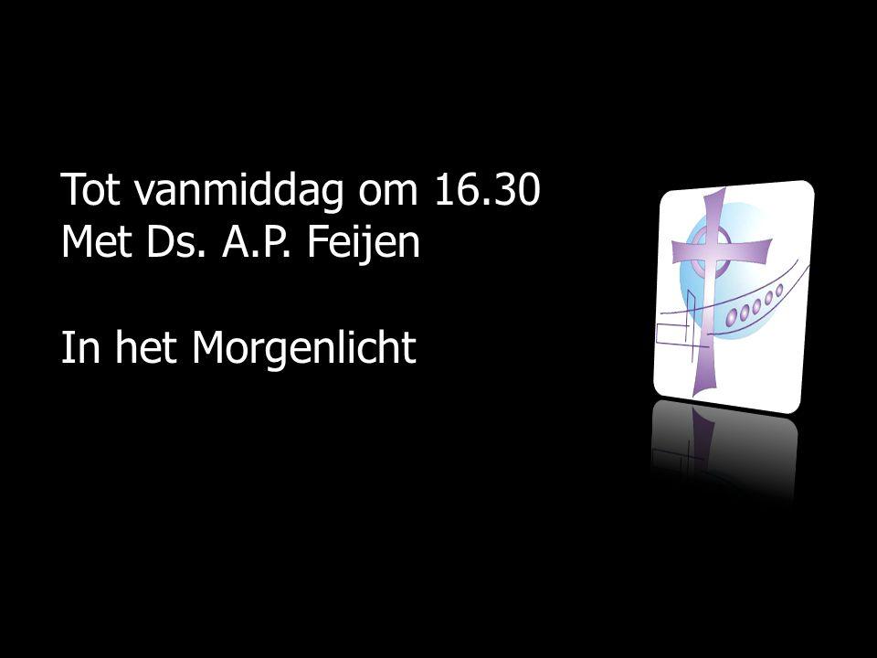 Tot vanmiddag om 16.30 Met Ds. A.P. Feijen In het Morgenlicht
