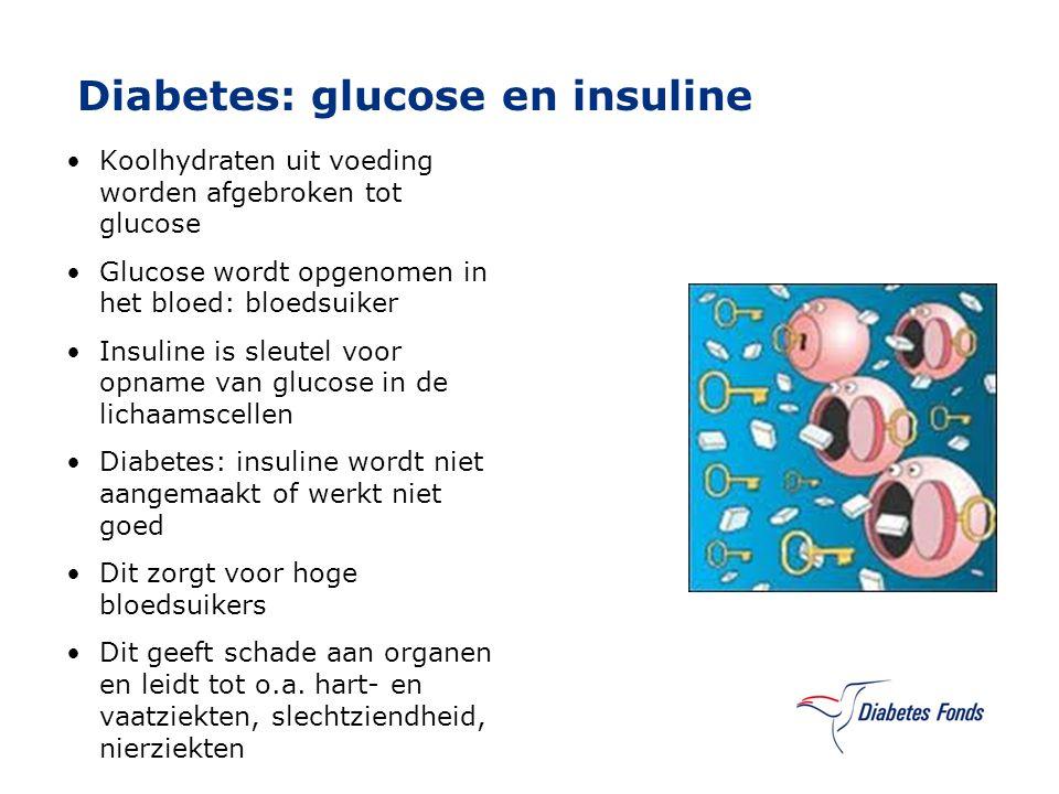 Diabetes: glucose en insuline Koolhydraten uit voeding worden afgebroken tot glucose Glucose wordt opgenomen in het bloed: bloedsuiker Insuline is sle