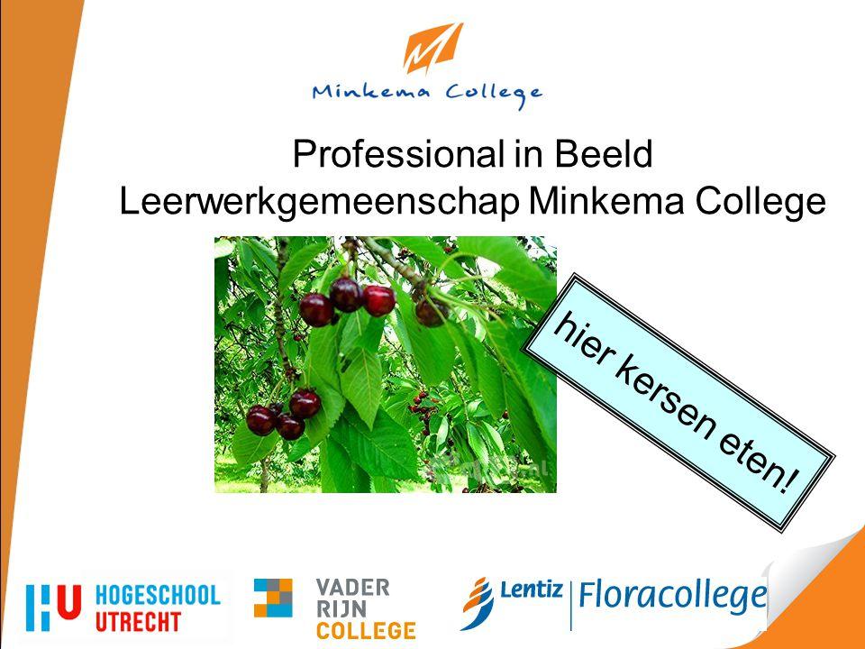 Professional in Beeld Leerwerkgemeenschap Minkema College hier kersen eten!