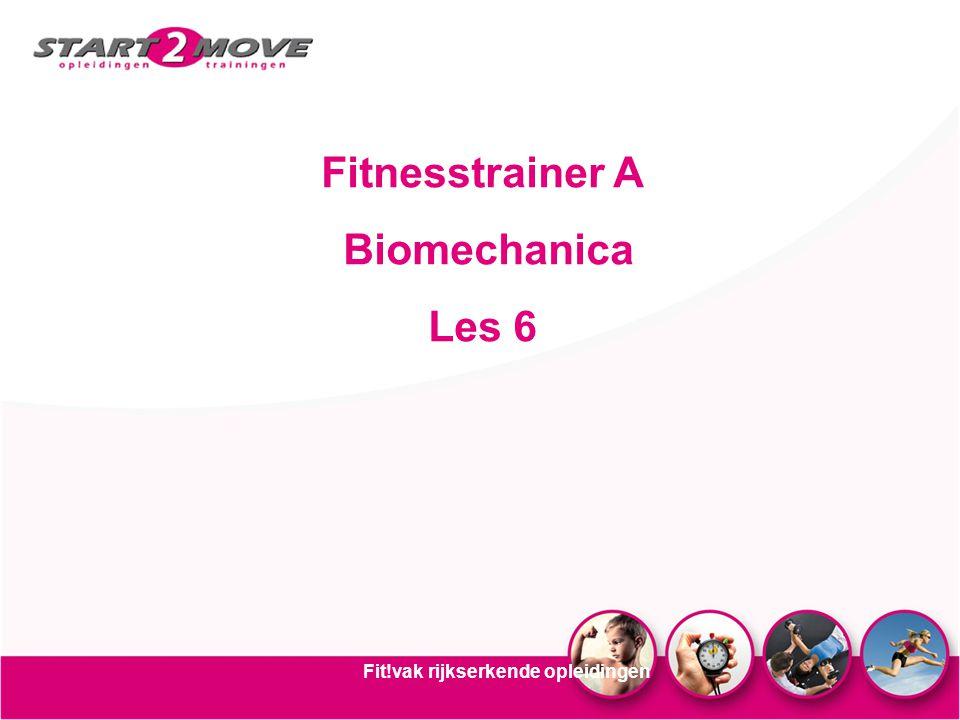 Fitnesstrainer A Biomechanica Les 6 Fit!vak rijkserkende opleidingen