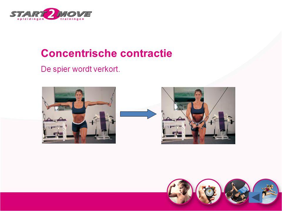 Concentrische contractie De spier wordt verkort.