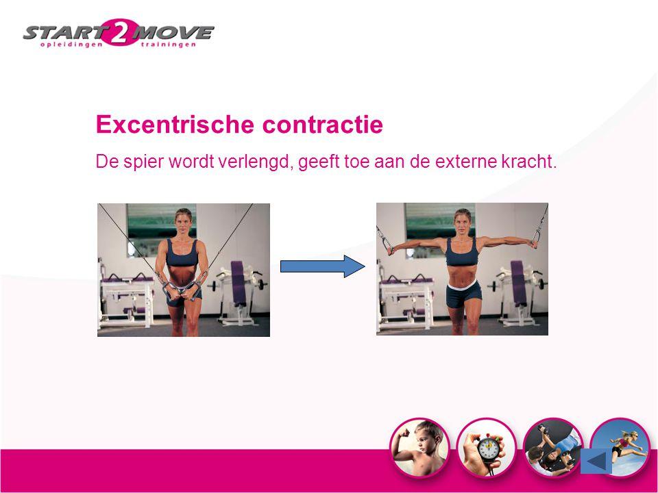 Excentrische contractie De spier wordt verlengd, geeft toe aan de externe kracht.