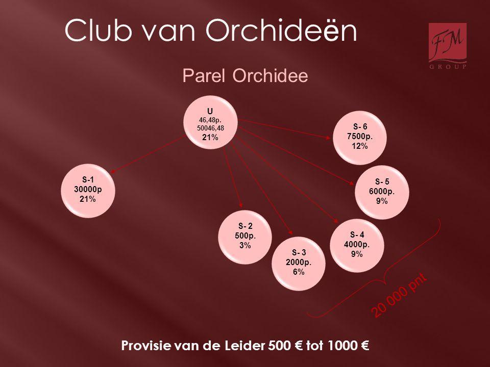 S-1 30000p 21% S- 2 500p. 3% S- 3 2000p. 6% S- 4 4000p. 9% S- 5 6000p. 9% S- 6 7500p. 12% Provisie van de Leider 500 € tot 1000 € 20 000 pnt Parel Orc