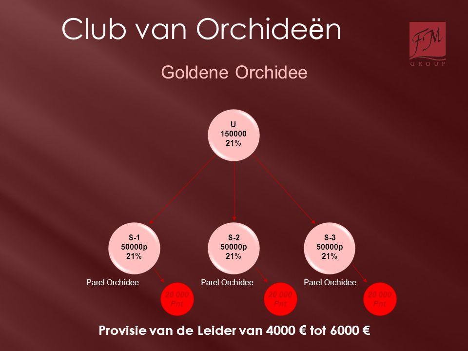 S-1 50000p 21% U 150000 21% S-2 50000p 21% S-3 50000p 21% Parel Orchidee Goldene Orchidee Provisie van de Leider van 4000 € tot 6000 € 20 000 Pnt 20 0