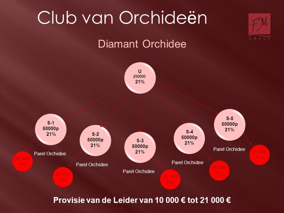 U 250000 21% S-2 50000p 21% S-1 50000p 21% S-3 50000p 21% S-4 50000p 21% S-5 50000p 21% Parel Orchidee Provisie van de Leider van 10 000 € tot 21 000