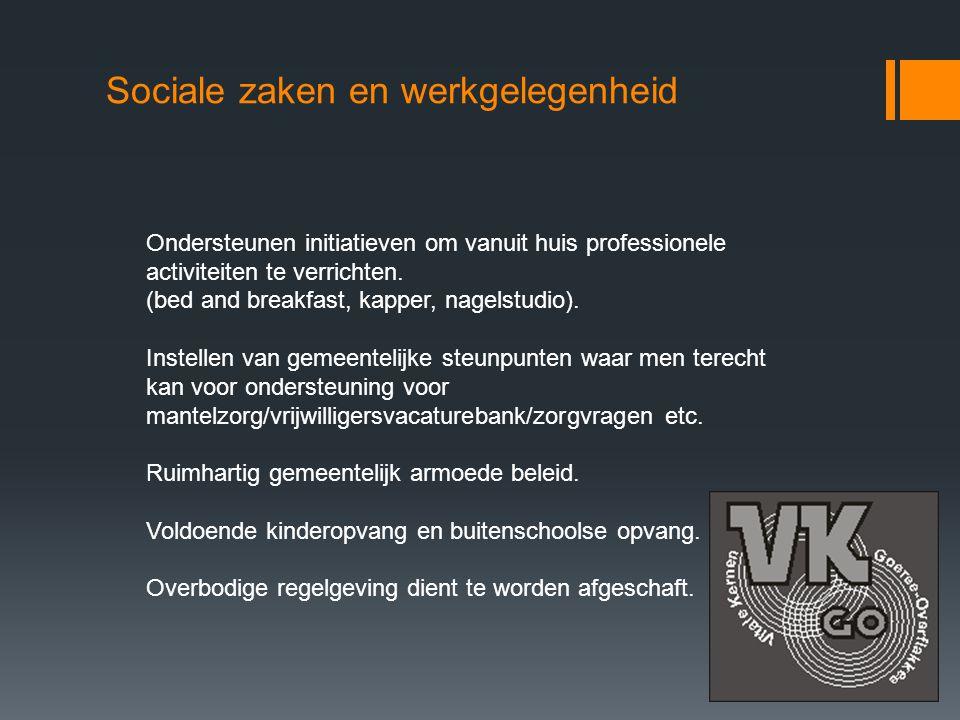 Sociale zaken en werkgelegenheid Ondersteunen initiatieven om vanuit huis professionele activiteiten te verrichten.