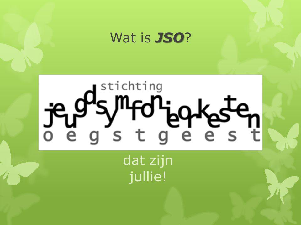 JSO Wat is het JSO.bestuur weekenden, reizen, pr, nieuwsbrief, website, etc.