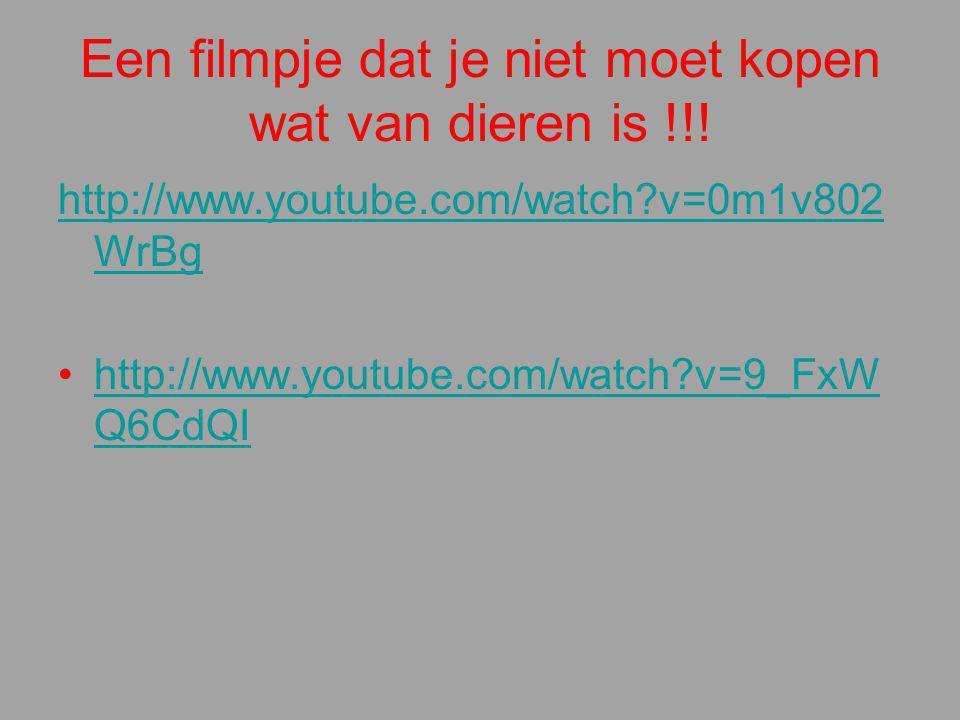 Een filmpje dat je niet moet kopen wat van dieren is !!! http://www.youtube.com/watch?v=0m1v802 WrBg http://www.youtube.com/watch?v=9_FxW Q6CdQIhttp:/