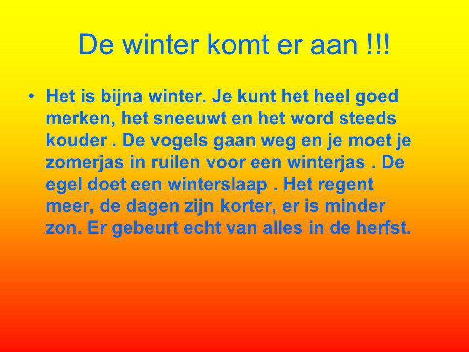 De winter komt er aan !!! Het is bijna winter. Je kunt het heel goed merken, het sneeuwt en het word steeds kouder. De vogels gaan weg en je moet je z