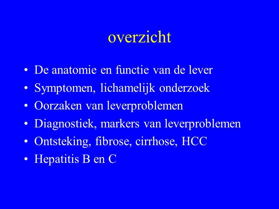 overzicht De anatomie en functie van de lever Symptomen, lichamelijk onderzoek Oorzaken van leverproblemen Diagnostiek, markers van leverproblemen Ontsteking, fibrose, cirrhose, HCC Hepatitis B en C