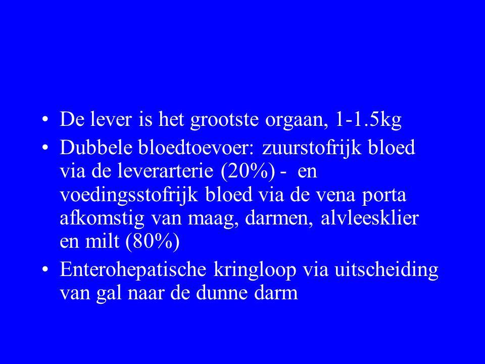 De lever is het grootste orgaan, 1-1.5kg Dubbele bloedtoevoer: zuurstofrijk bloed via de leverarterie (20%) - en voedingsstofrijk bloed via de vena porta afkomstig van maag, darmen, alvleesklier en milt (80%) Enterohepatische kringloop via uitscheiding van gal naar de dunne darm