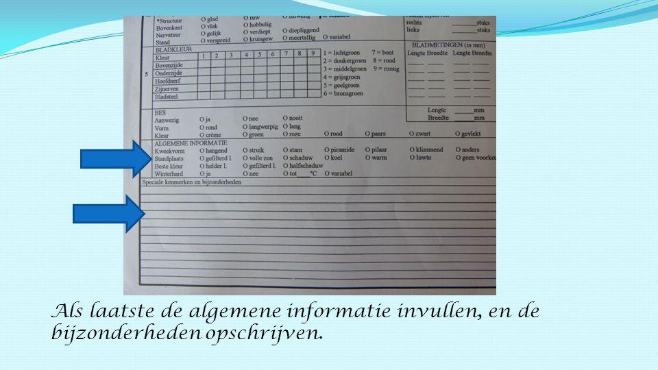 Als laatste de algemene informatie invullen, en de bijzonderheden opschrijven.