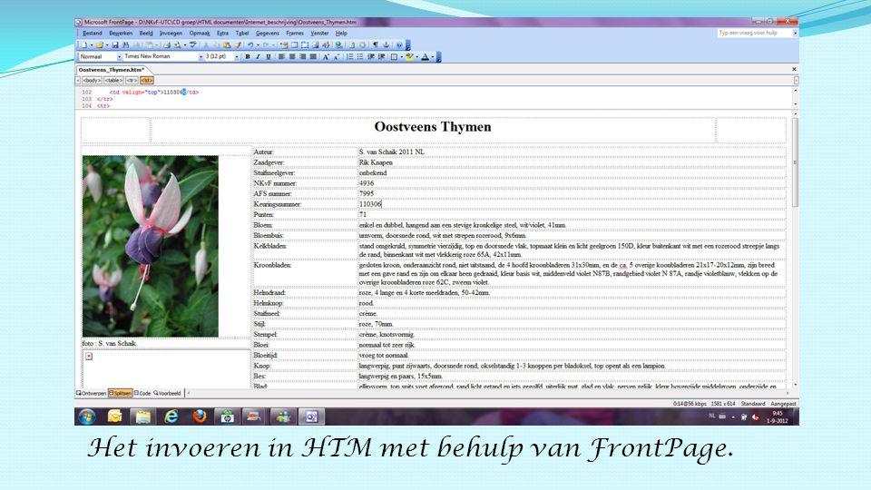 Het invoeren in HTM met behulp van FrontPage.
