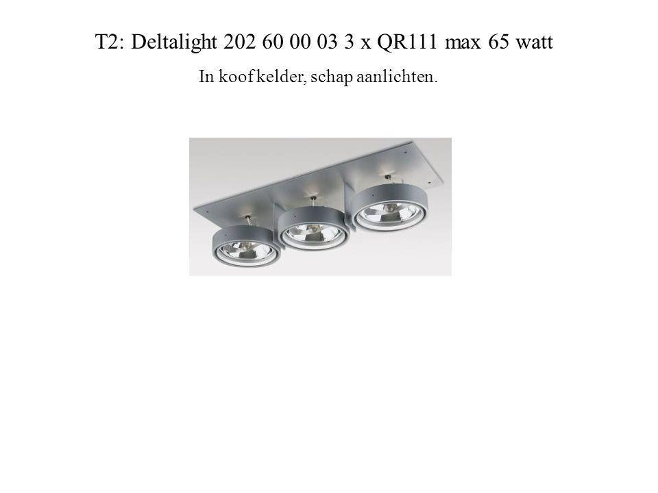 T2: Deltalight 202 60 00 03 3 x QR111 max 65 watt In koof kelder, schap aanlichten.