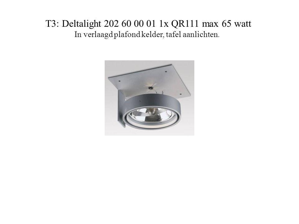 T3: Deltalight 202 60 00 01 1x QR111 max 65 watt In verlaagd plafond kelder, tafel aanlichten.