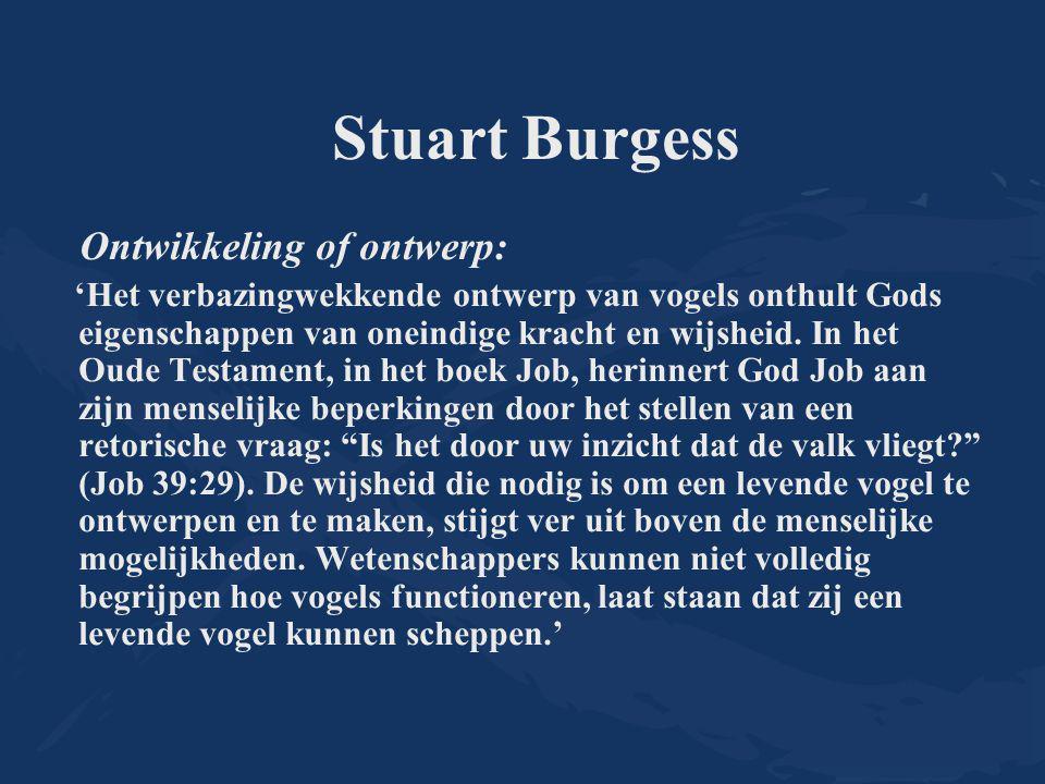 Stuart Burgess Ontwikkeling of ontwerp: 'Het verbazingwekkende ontwerp van vogels onthult Gods eigenschappen van oneindige kracht en wijsheid. In het