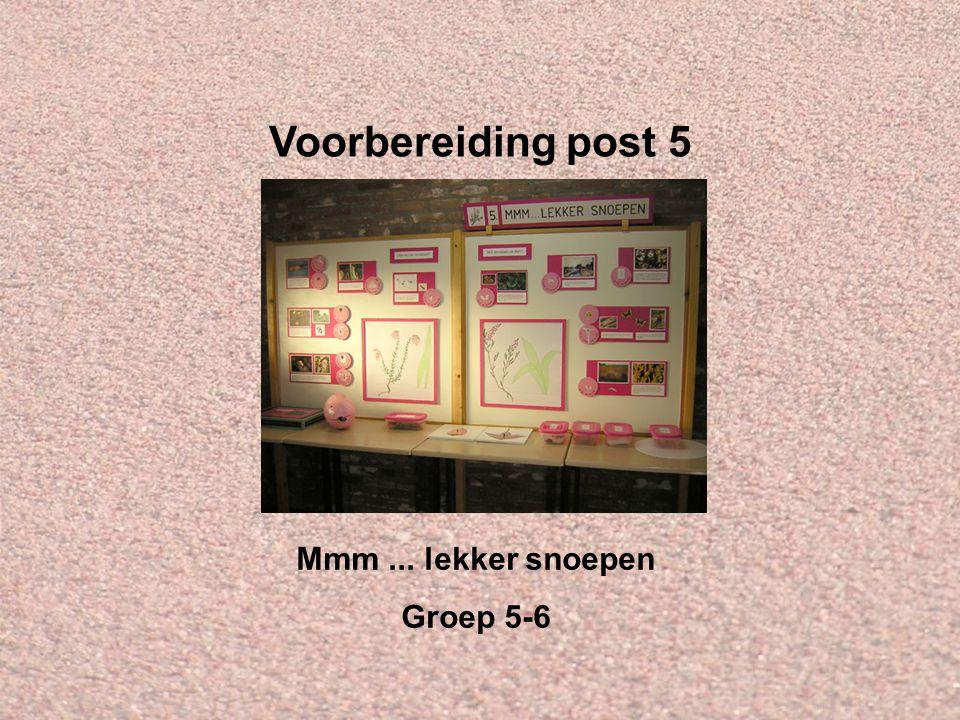 Welkom bij IVN Valkenswaard-Waalre Dit is de Powerpointserie als voorbereiding op post 5: Mmm...