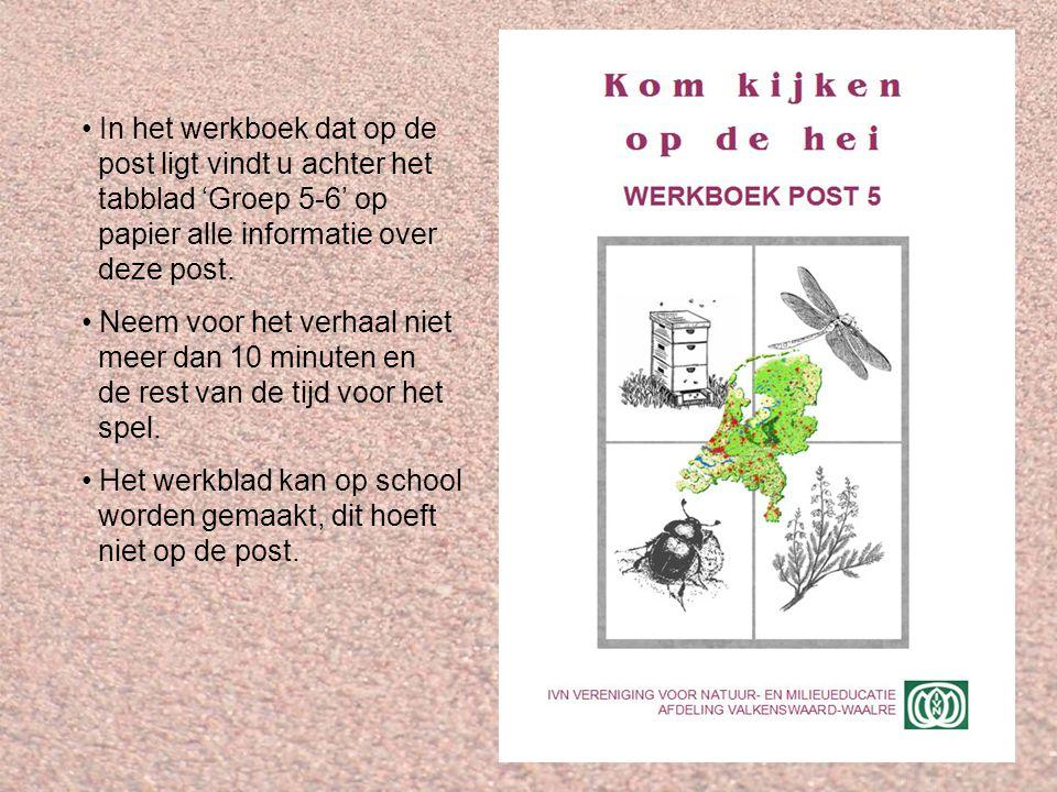 Verhaal Op de post willen we de kinderen de volgende dingen duidelijk maken: Hoe zijn de bloemen van struikhei en dophei gebouwd.