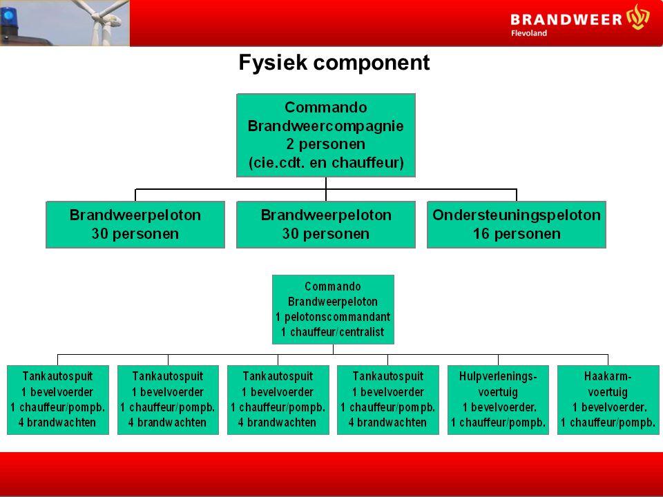 Fysiek component