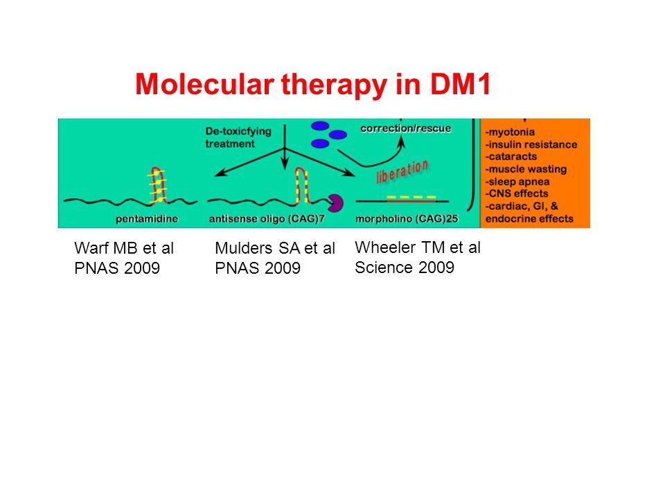 Aangrijpingspunten voor therapie verlengd DNA (1) giftig intermediair (RNA) (2) slechte aanmaak functionele en structurele componenten (eiwitten) (3) sterfte en functieverlies van cellen (4) functieverlies weefsels en organen oorzaak gevolg