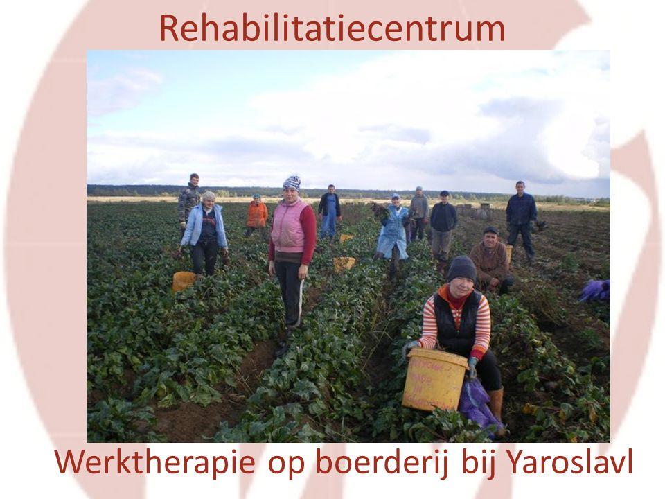 Werktherapie op boerderij bij Yaroslavl Rehabilitatiecentrum