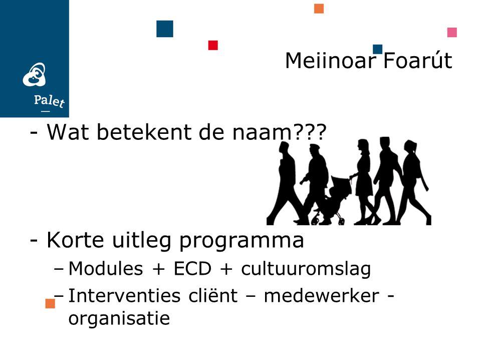 Meiinoar Foarút - Wat betekent de naam??? - Korte uitleg programma –Modules + ECD + cultuuromslag –Interventies cliënt – medewerker - organisatie