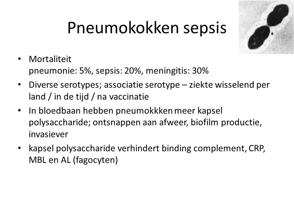 Pneumokokken sepsis Mortaliteit pneumonie: 5%, sepsis: 20%, meningitis: 30% Diverse serotypes; associatie serotype – ziekte wisselend per land / in de