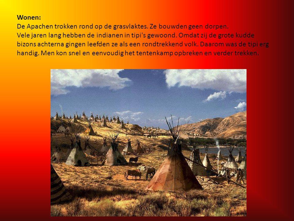 Het leefgebied van de Jicarilla Apachen Het landschap waar de Apachen leefden was heel afwisselend. Hoge bergen met veel sneeuw, mooie grasvlaktes die