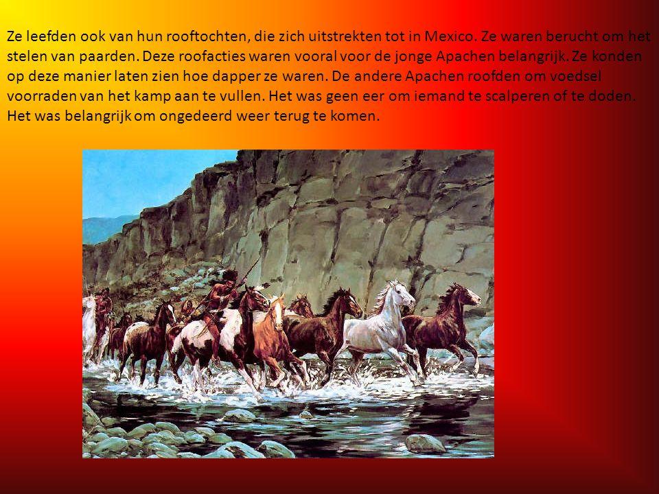 Waar leefden de Apachen van? De Apaches leefden in groepen met elk hun eigen gebied en levensgewoonten. De Apachen uit het westen hielden zich met de