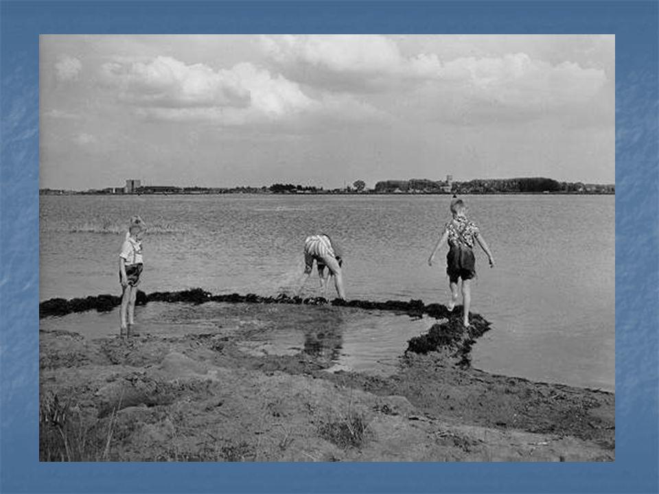 In Oostelijk en Zuidelijk Flevoland was het winnen van landbouwgronden niet langer het voornaamste doel van de inpoldering. Huisvesting en recreatiemo